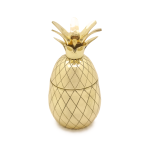 W&P Design Pineapple Tumbler  $45